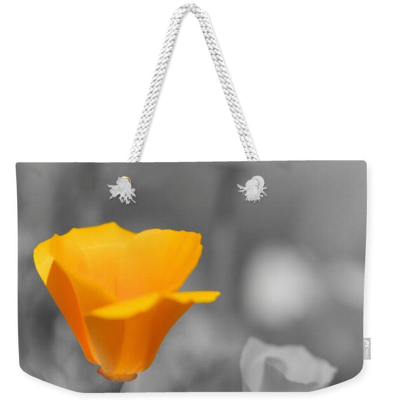 California Poppies Photographs Weekender Tote Bag featuring the photograph The Poppy Stands Alone by Brooke Roby