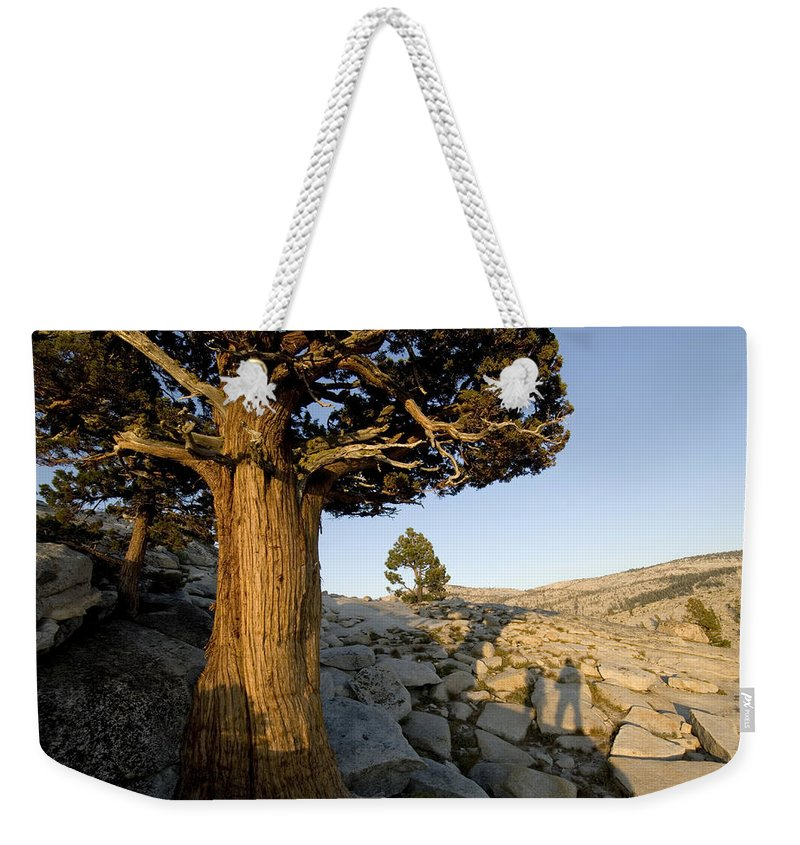 Two People Weekender Tote Bag featuring the photograph The Shadow Of Two Hikers Stands Next by Bill Hatcher
