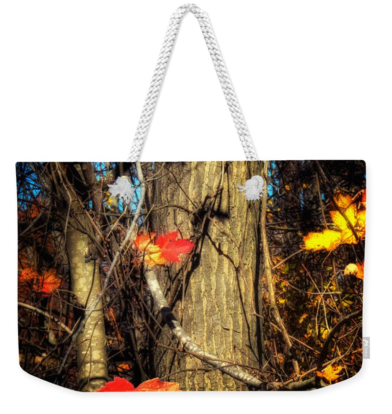Xdop Weekender Tote Bag featuring the photograph The Show Is Almost Over Folks by John Herzog