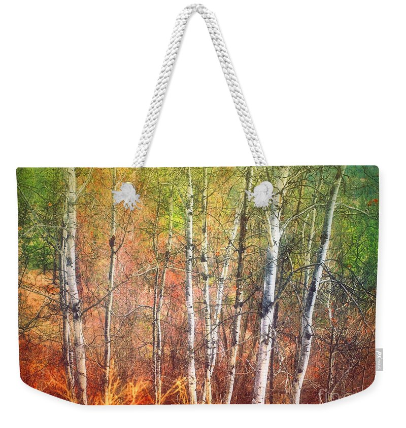 Trees Weekender Tote Bag featuring the photograph The Trees And The Colour by Tara Turner