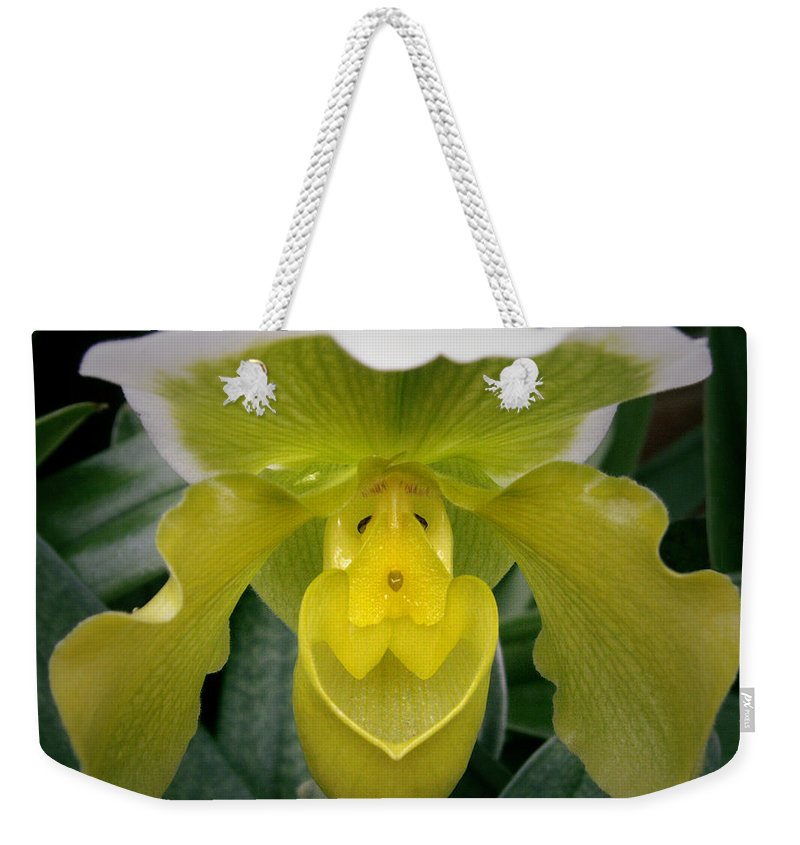 Orchid Weekender Tote Bag featuring the photograph The Yellow Orchid by Nancy Griswold