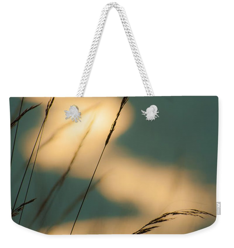 Africa Weekender Tote Bag featuring the photograph Thirtyfour by Alistair Lyne