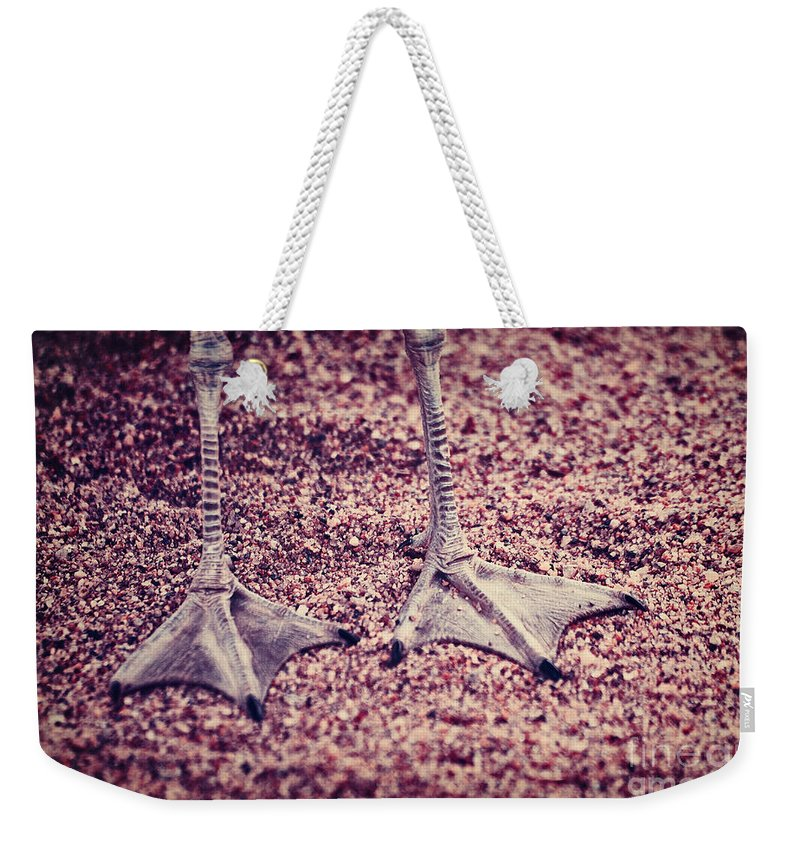 Legs Weekender Tote Bag featuring the photograph This Is Not A Bird by Aimelle