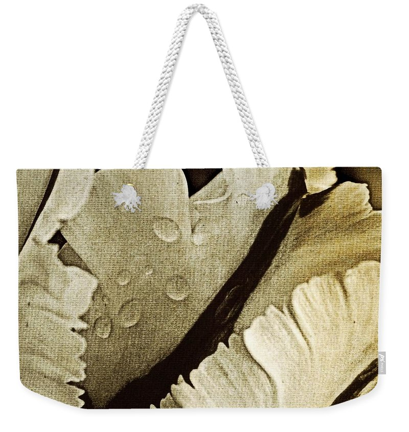 Weekender Tote Bag featuring the photograph Three Stripes by Chris Berry