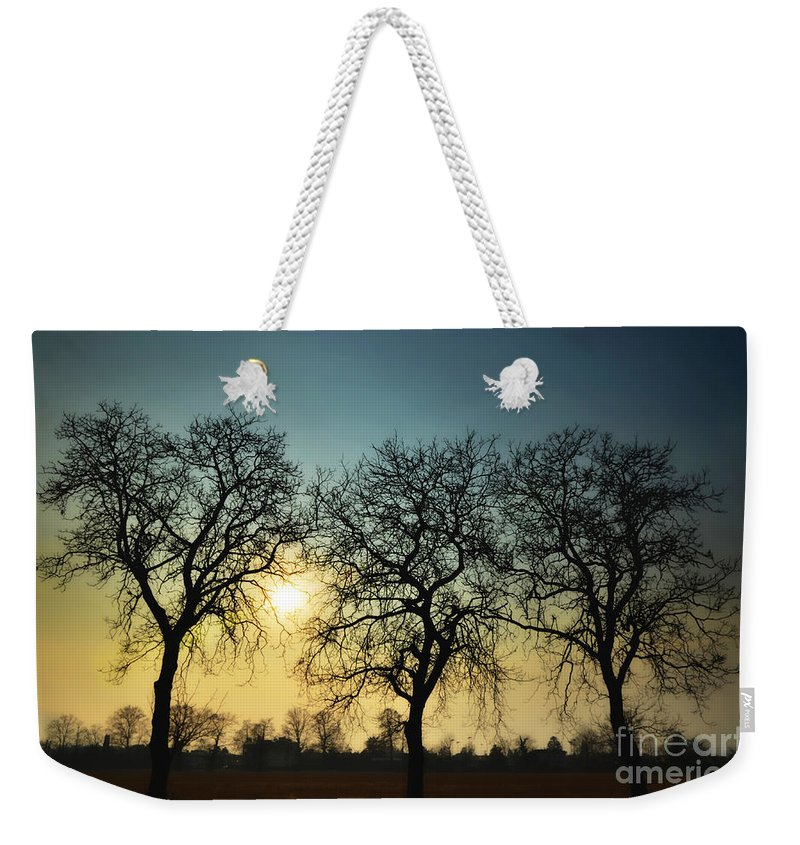 Sun Weekender Tote Bag featuring the photograph Three Trees by Mats Silvan