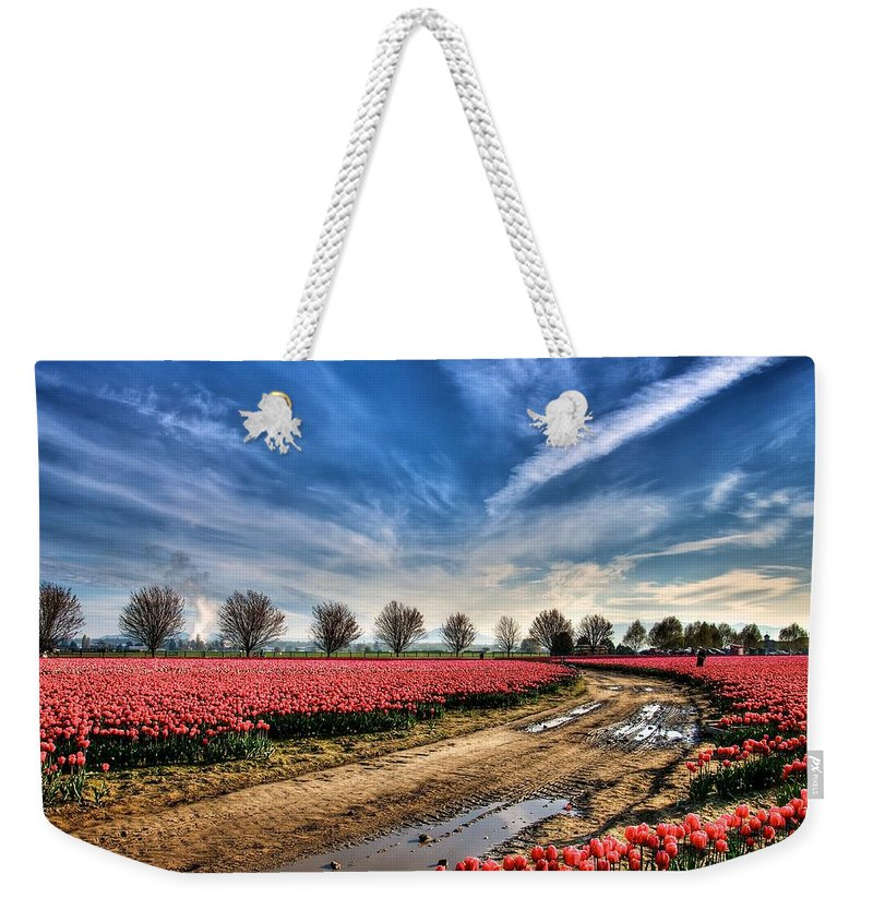 Tulip Weekender Tote Bag featuring the photograph Through The Beauty by Spencer McDonald