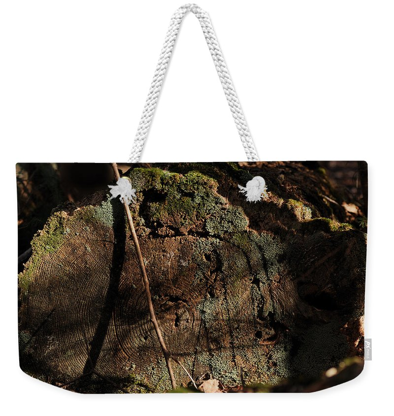 Log Weekender Tote Bag featuring the photograph Time by Susan Capuano