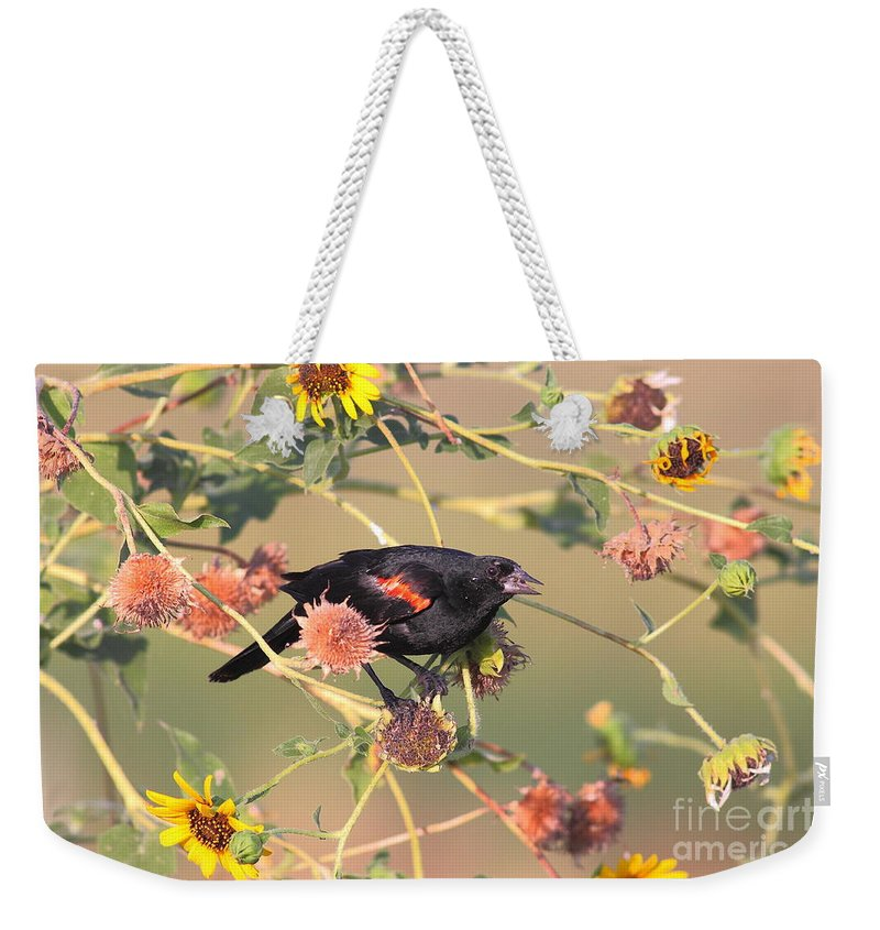 Animal Weekender Tote Bag featuring the photograph Tinted By Sunset by Robert Frederick