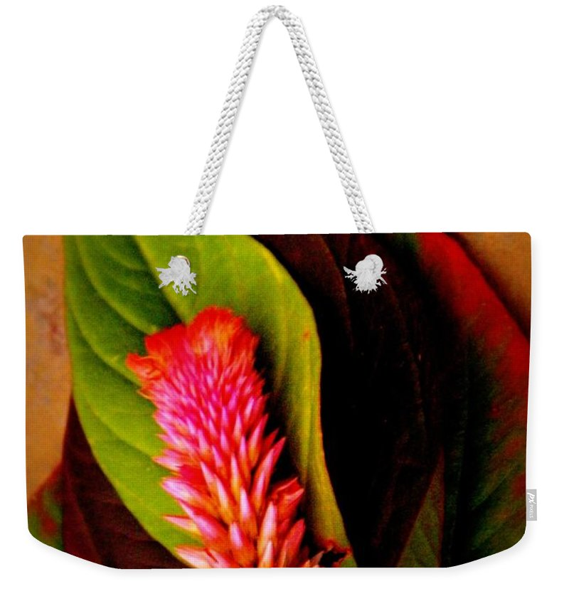 Earthy Weekender Tote Bag featuring the photograph Tiny Plume by Chris Berry