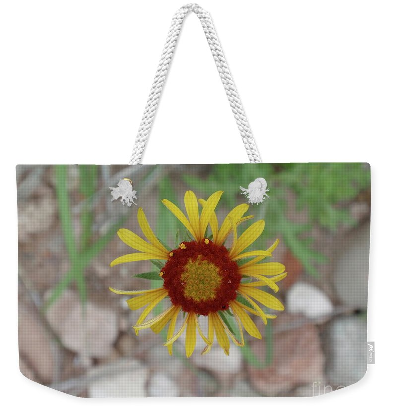 Aimee Mouw Weekender Tote Bag featuring the photograph Tiny Wheel Of Joy by Aimee Mouw