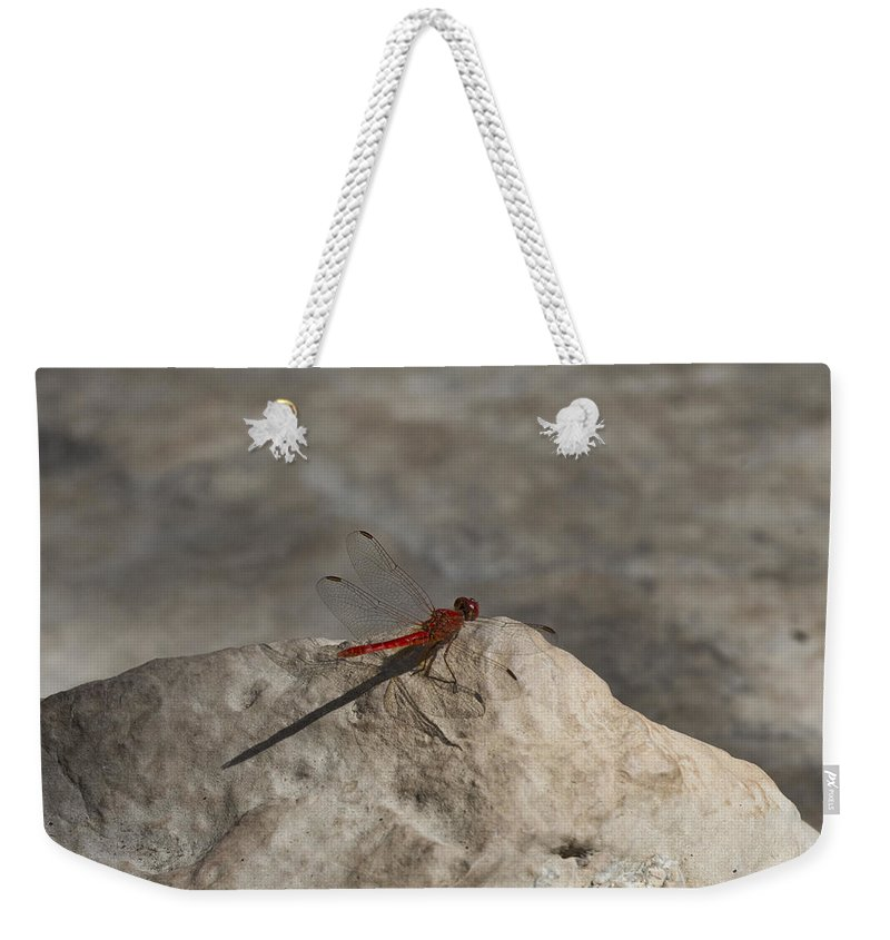 Dragon Fly Weekender Tote Bag featuring the photograph Tipping Point by Douglas Barnard