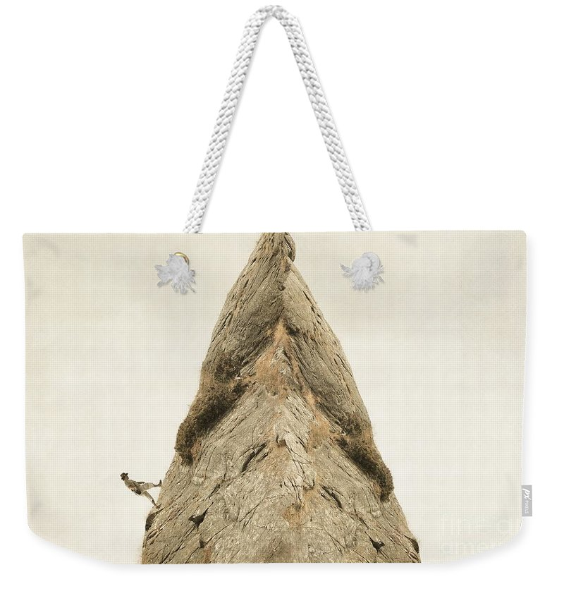Surrealism Weekender Tote Bag featuring the photograph To The Top by Sonya Kanelstrand