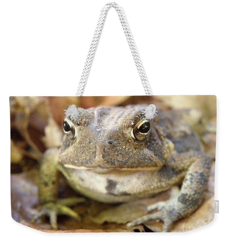 Toad Weekender Tote Bag featuring the photograph Toad by Lainie Wrightson