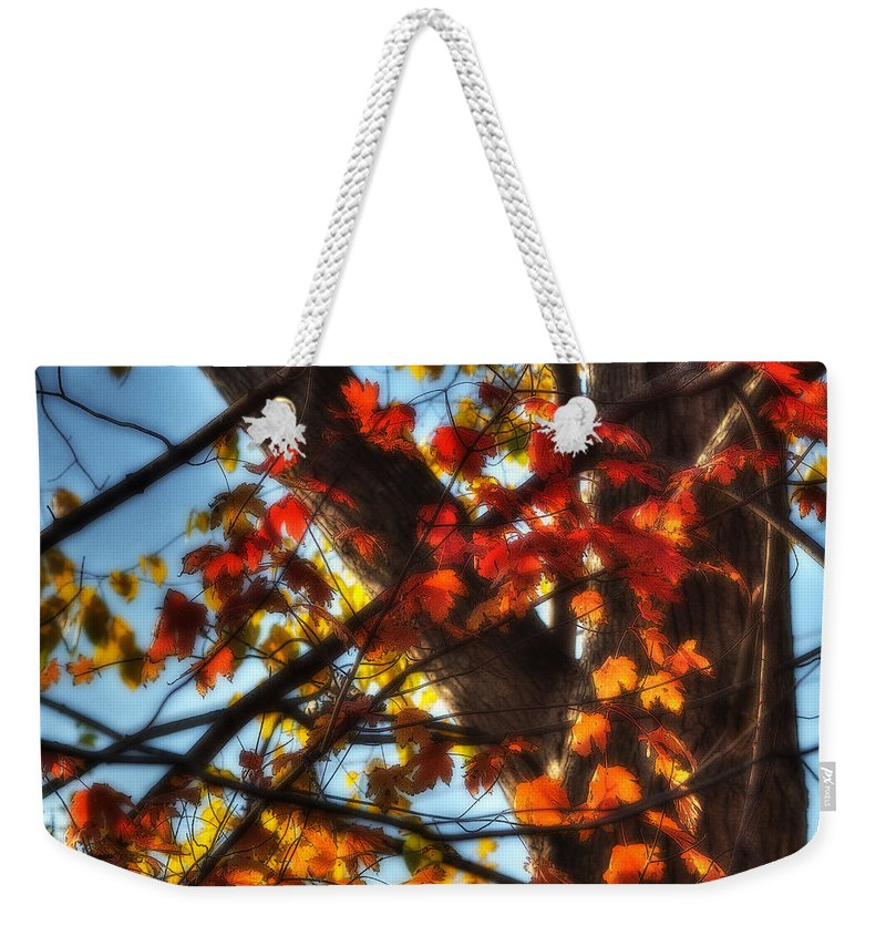 Acrylic Prints Weekender Tote Bag featuring the photograph Too Much by John Herzog