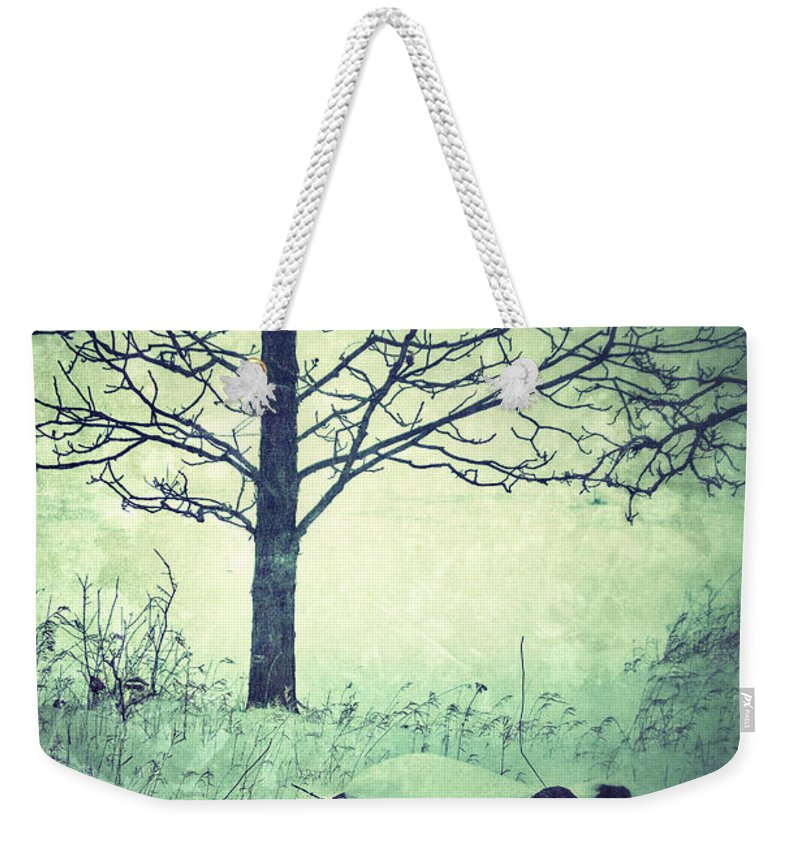 Rural Weekender Tote Bag featuring the photograph Tree And Fence In The Fog And Snow by Jill Battaglia