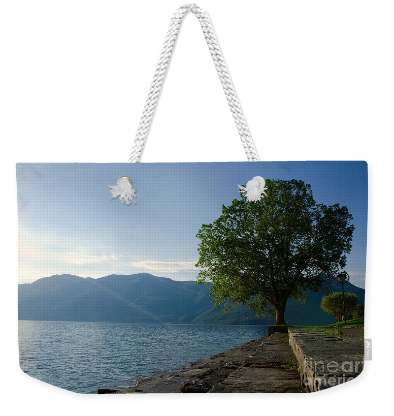 Tree Weekender Tote Bag featuring the photograph Tree On The Lake Front by Mats Silvan