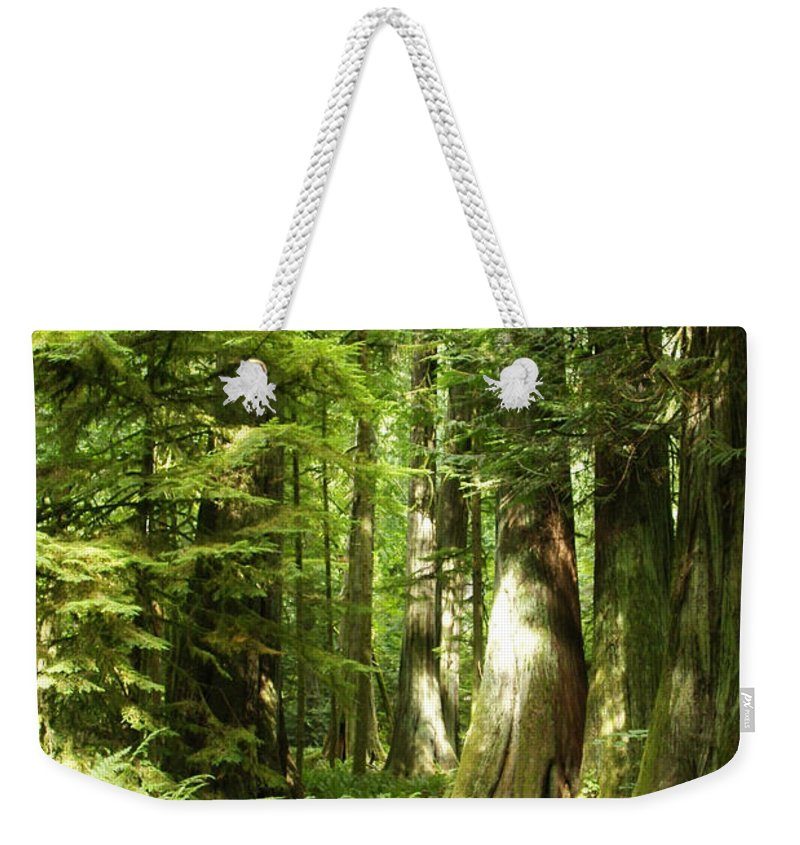 Trees Weekender Tote Bag featuring the photograph Trees At Cathedral Grove by Marilyn Wilson