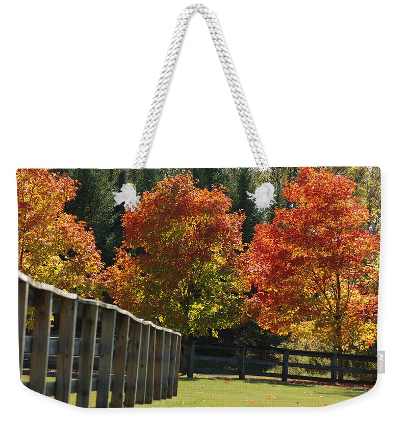 Trees Weekender Tote Bag featuring the photograph Trees In Autumn by Optical Playground By MP Ray