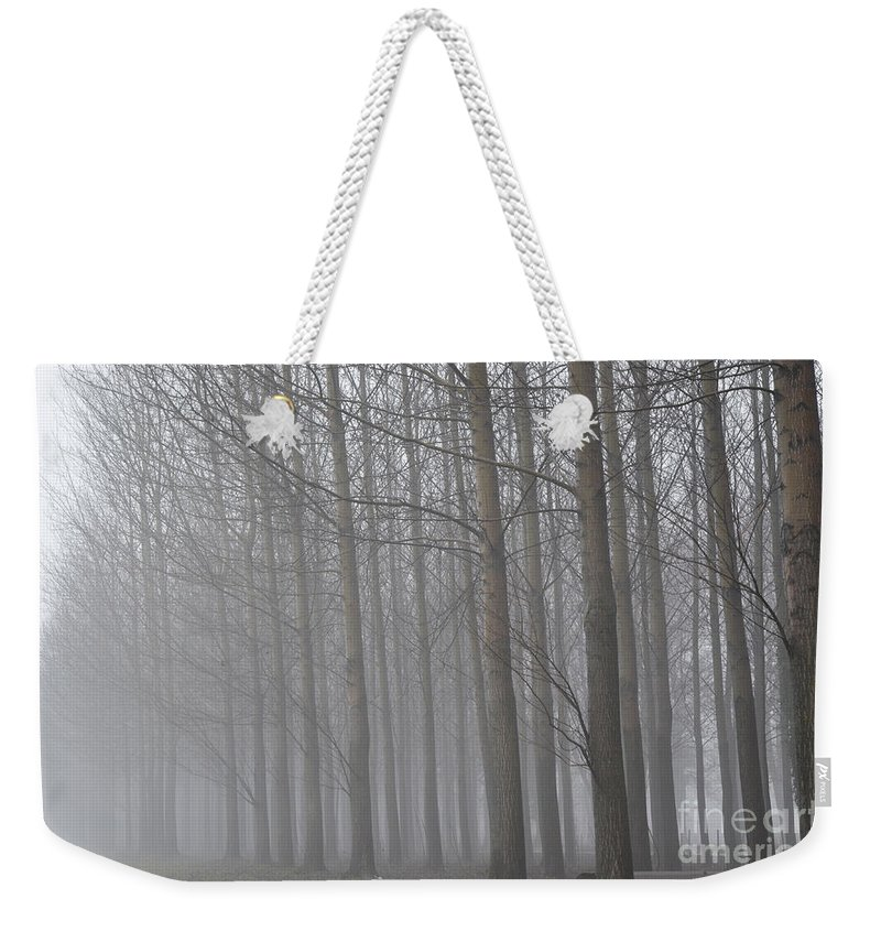 Trees Weekender Tote Bag featuring the photograph Trees In The Fog by Mats Silvan