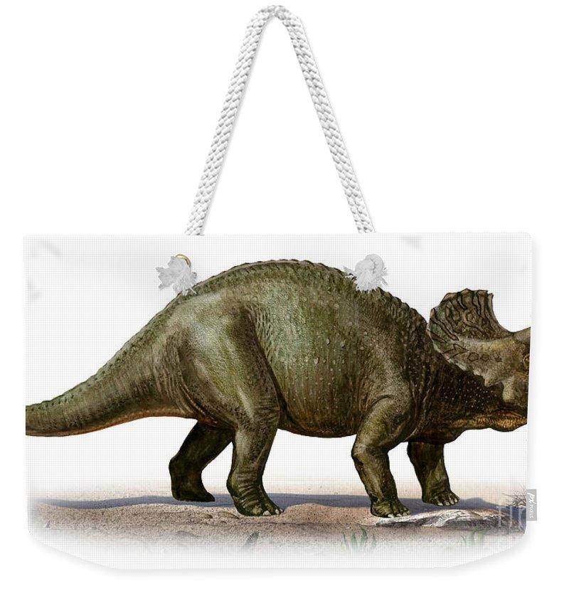 Horizontal Weekender Tote Bag featuring the digital art Triceratops Prorsus, A Prehistoric Era by Sergey Krasovskiy