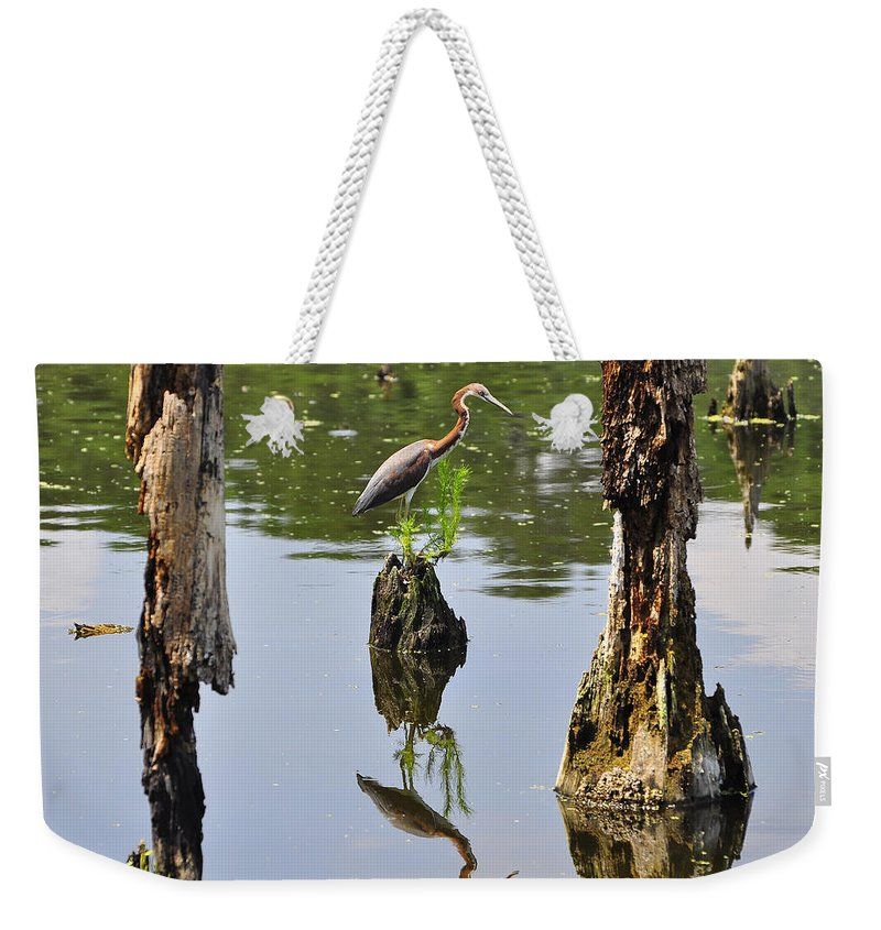 Heron Weekender Tote Bag featuring the photograph Tricolored Reflection by Al Powell Photography USA