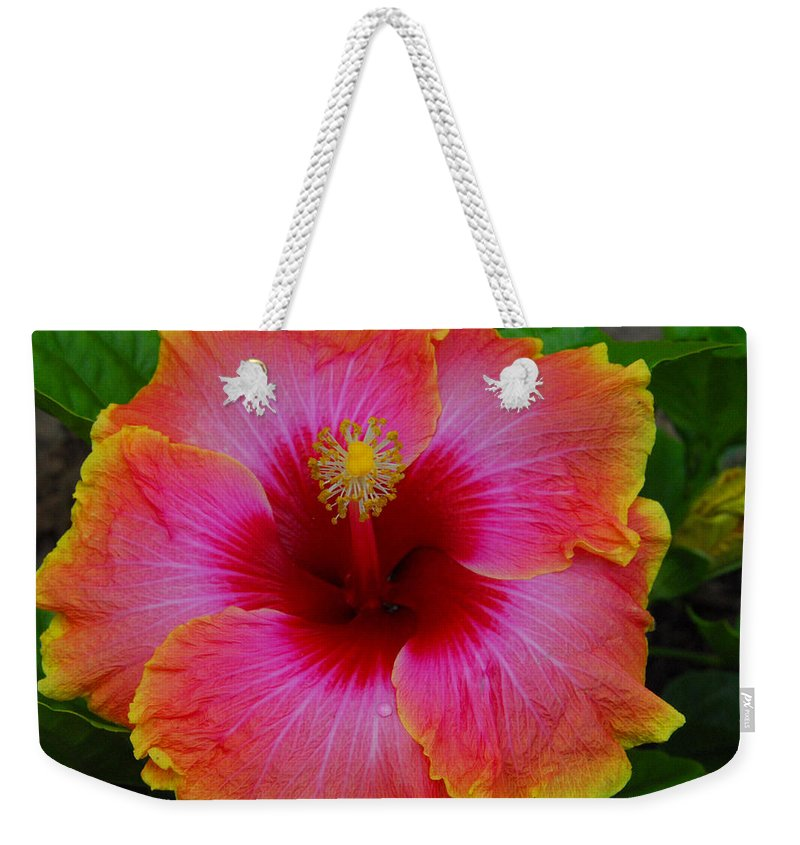 Hibiscus Weekender Tote Bag featuring the photograph Tropical Beauty by Lynn Bauer