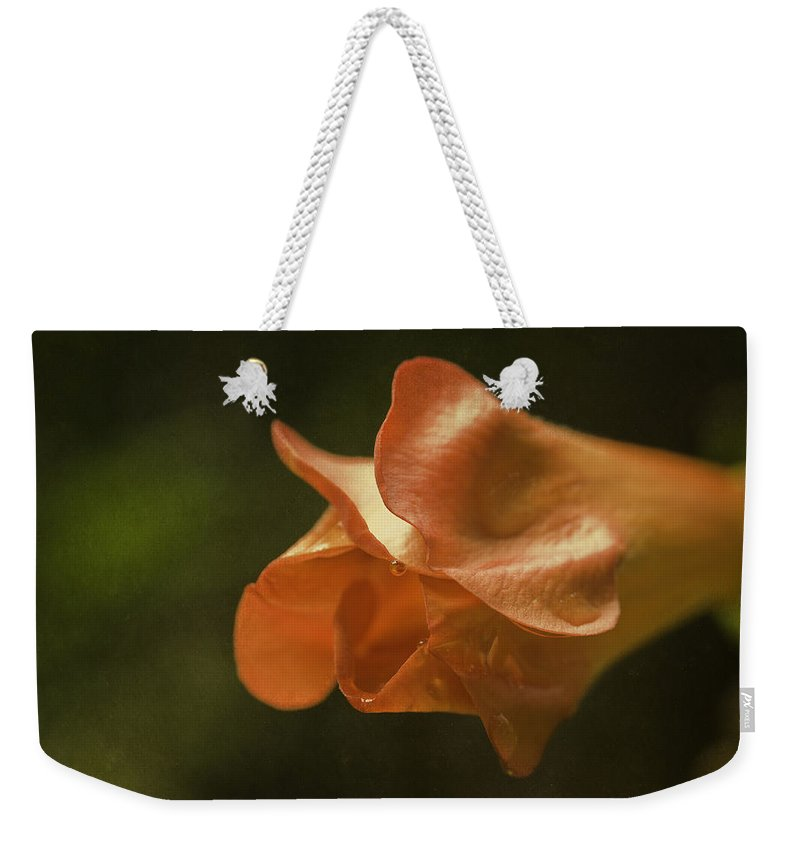 Flower Weekender Tote Bag featuring the photograph Trumpet Vine Bud by Fran Gallogly
