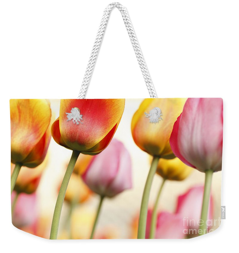 Tulip Weekender Tote Bag featuring the photograph Tulip - Impressions 1 by Martin Williams