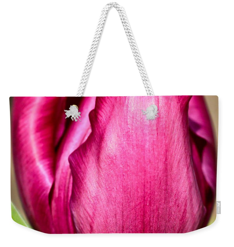 Flower Weekender Tote Bag featuring the photograph Tulip Are Better... by Heidi Smith