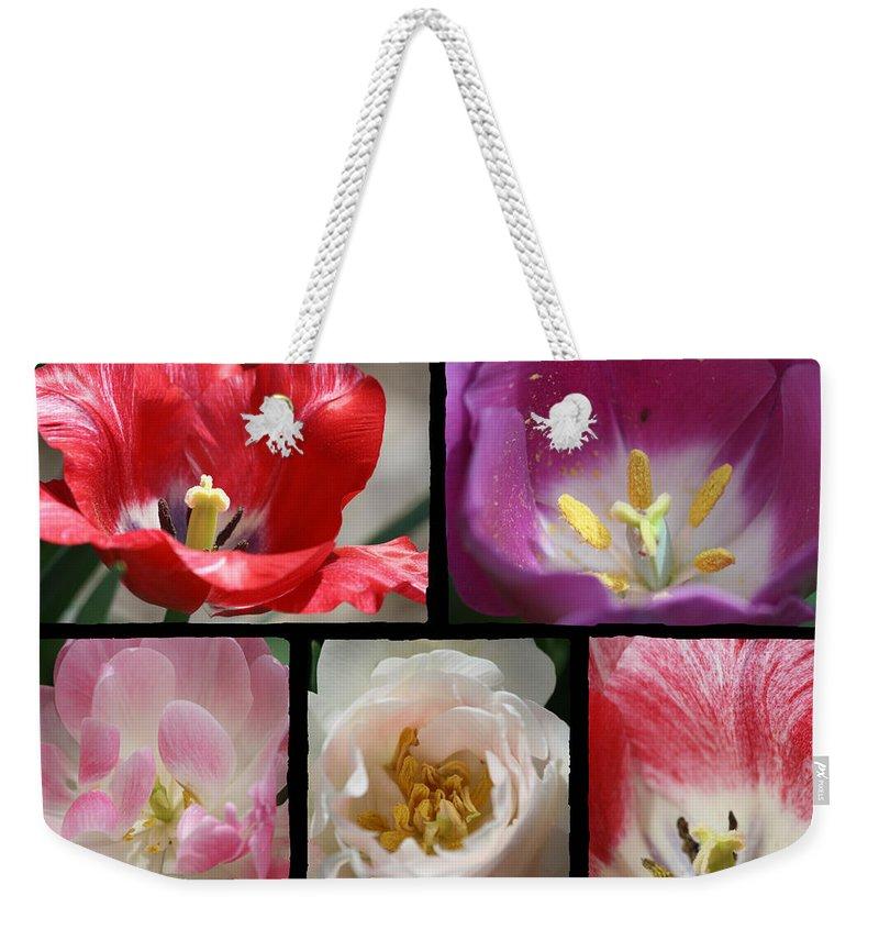 Tulip Weekender Tote Bag featuring the photograph Tulip Sampler by Teresa Mucha