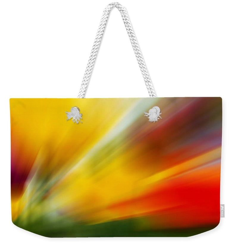 Tulips Art Weekender Tote Bag featuring the photograph Tulips -2 by Mark Ashkenazi