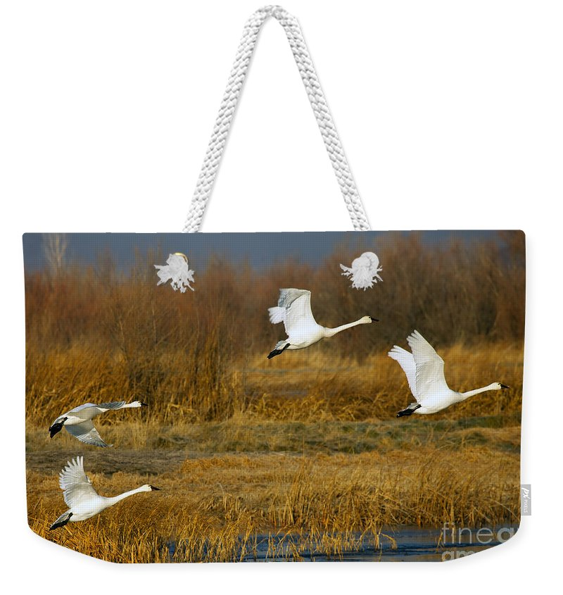 Sawn Weekender Tote Bag featuring the photograph Tundra Flight by Mike Dawson