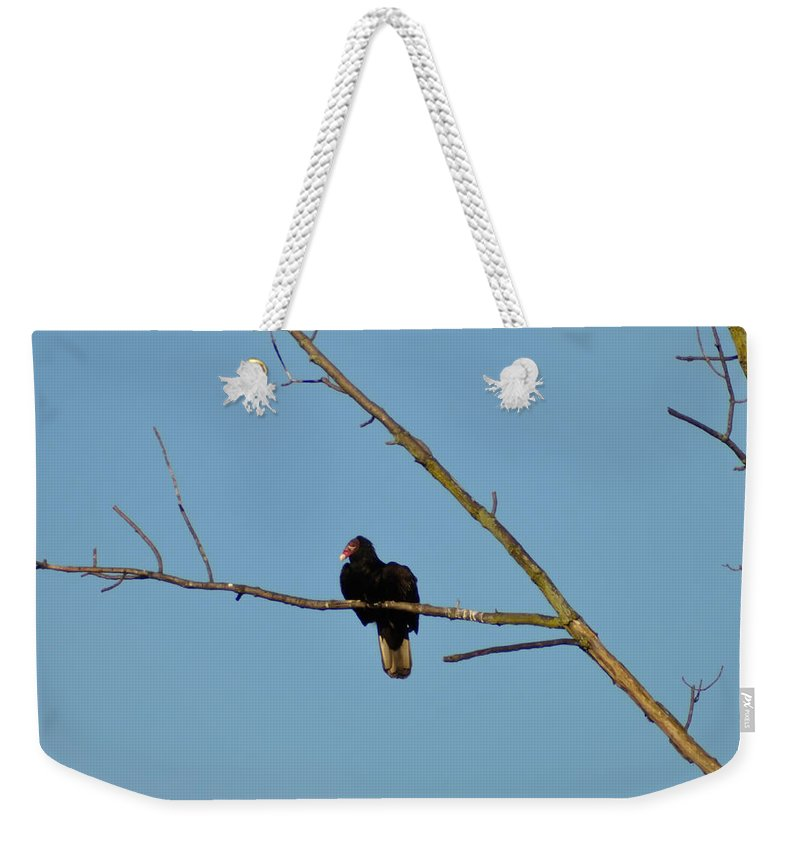 Turkey Vulture Weekender Tote Bag featuring the photograph Turkey Vulture by Bill Cannon