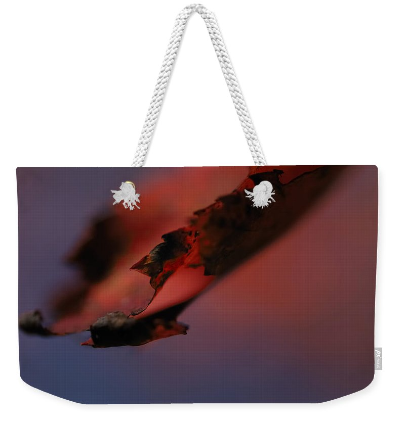 Nature Weekender Tote Bag featuring the photograph Turn Over A New Leaf by Susan Capuano