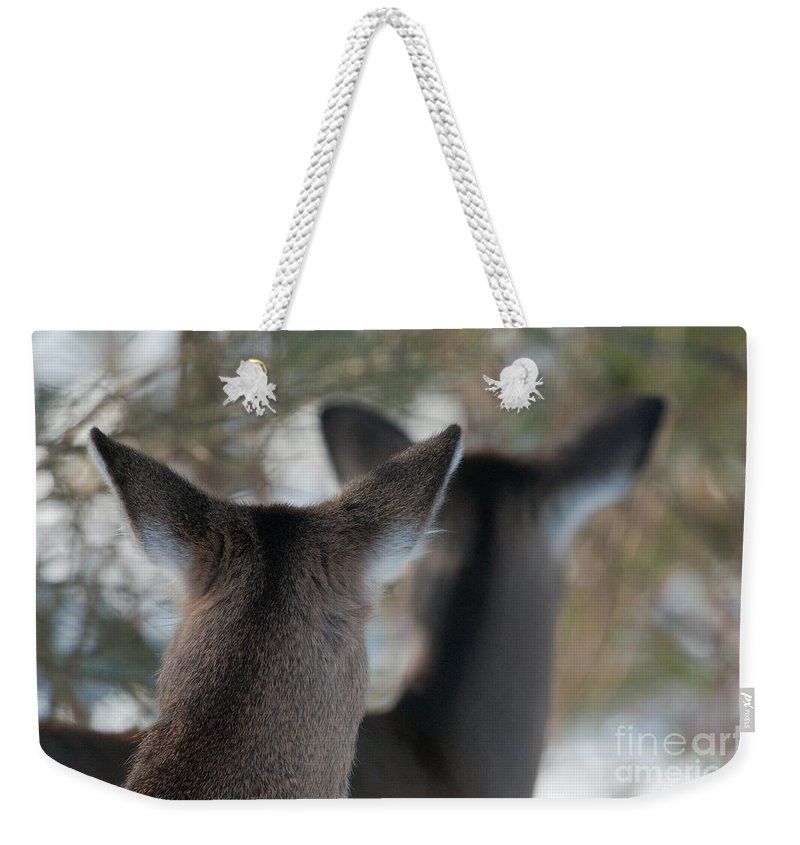Bronstein Weekender Tote Bag featuring the photograph Two Heads Are Better Than One by Sandra Bronstein