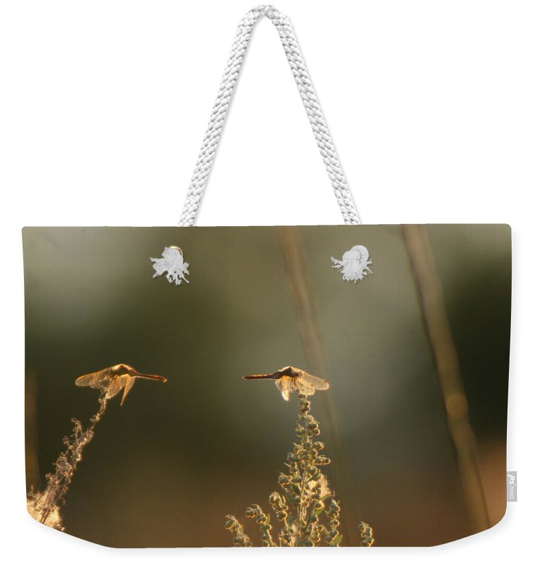 Dragonflies Weekender Tote Bag featuring the photograph Two Is Better by Andrea Lawrence