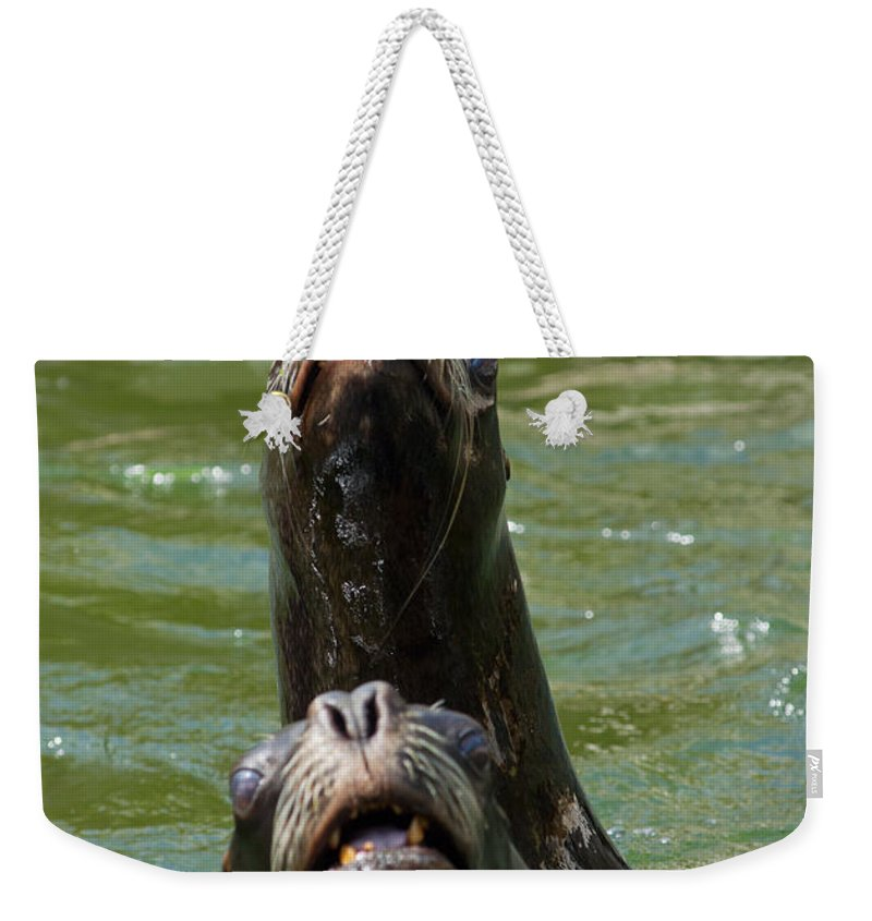 America Weekender Tote Bag featuring the photograph Two Of Us by Andrew Michael