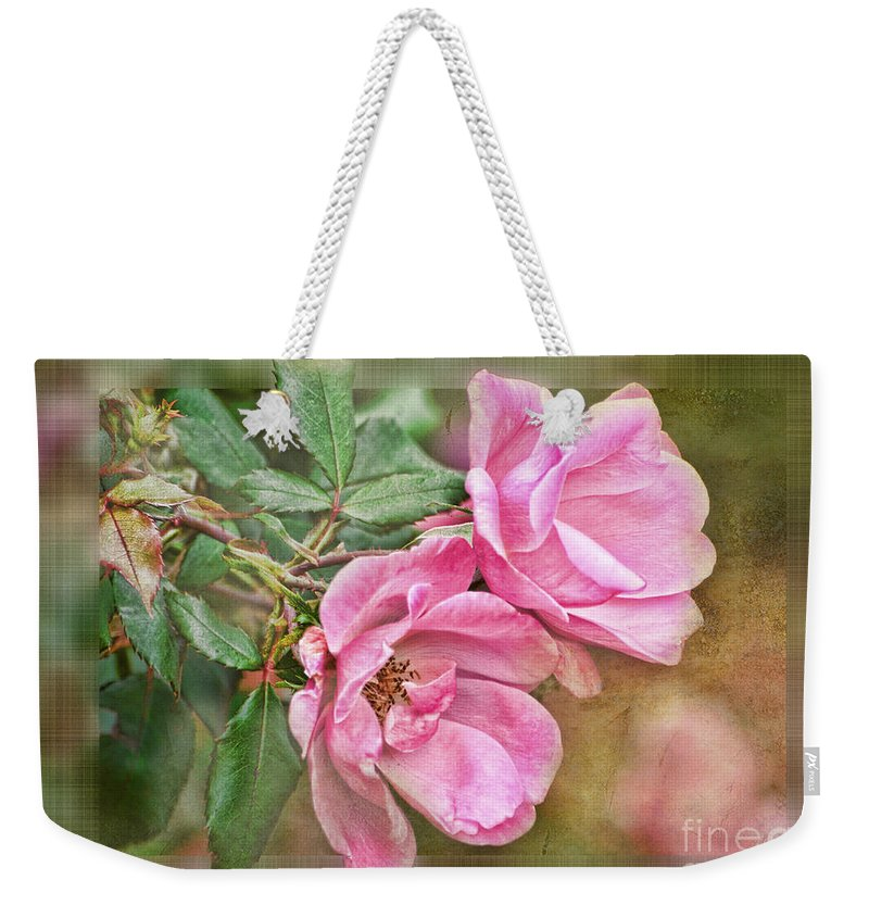 Nature Weekender Tote Bag featuring the photograph Two Pink Roses II Blank Greeting Card by Debbie Portwood