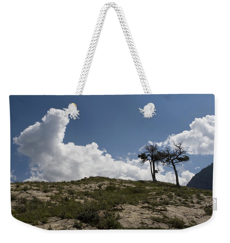 Trees Weekender Tote Bag featuring the photograph Two Trees Of Many Glacier by Lorraine Devon Wilke