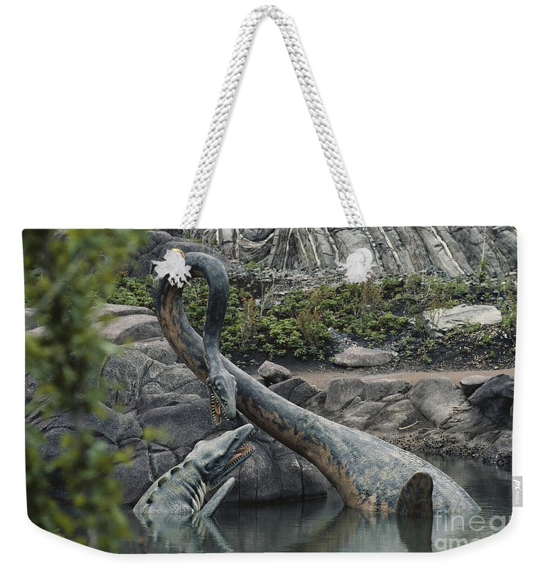 Elasmosaurus Weekender Tote Bag featuring the photograph Tylosaurus And Elasmosaurus by Tom McHugh and Photo Researchers