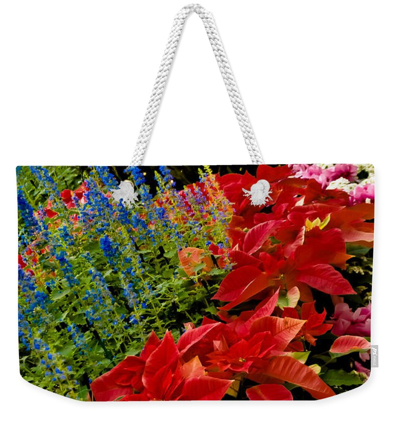 Pointsettia Weekender Tote Bag featuring the photograph Up All Night by Trish Tritz