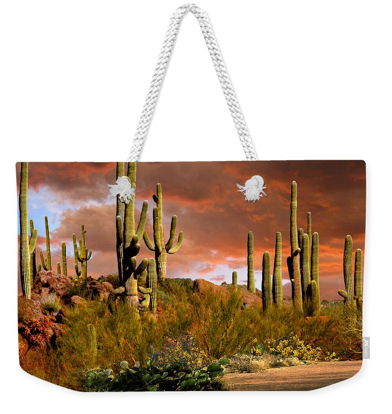 Arizona Weekender Tote Bag featuring the photograph Via Del Oeste by Ciro Verdi