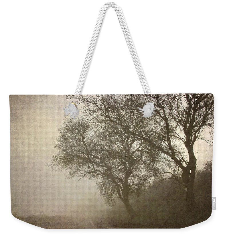 Landscapes Weekender Tote Bag featuring the photograph Vigilants Trees In The Misty Road by Guido Montanes Castillo