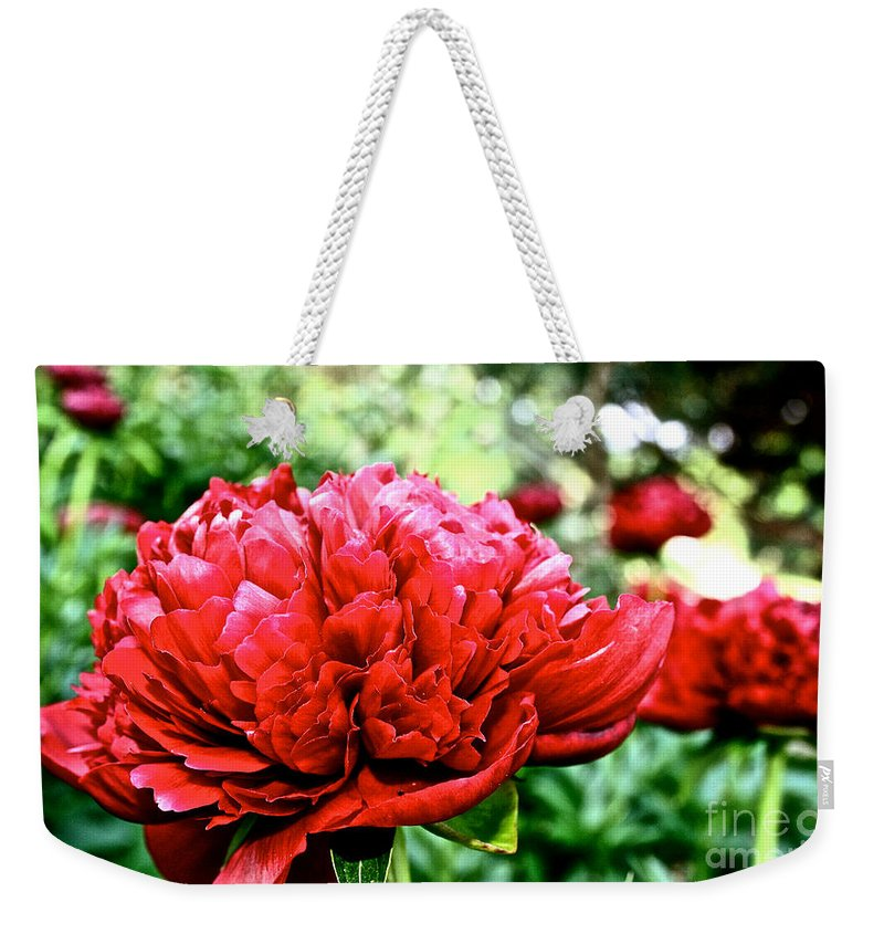 Plant Weekender Tote Bag featuring the photograph Vivid Peonies by Susan Herber