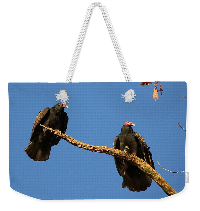 Turkey Vulture Weekender Tote Bag featuring the photograph Vultures On A Branch by Doris Potter