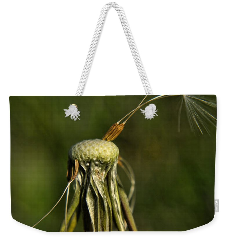 Yhun Suarez Weekender Tote Bag featuring the photograph Waiting For The Wind by Yhun Suarez