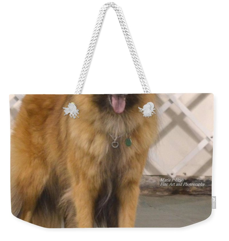 Belgian Tervuran Weekender Tote Bag featuring the photograph Waiting On You by Maria Urso