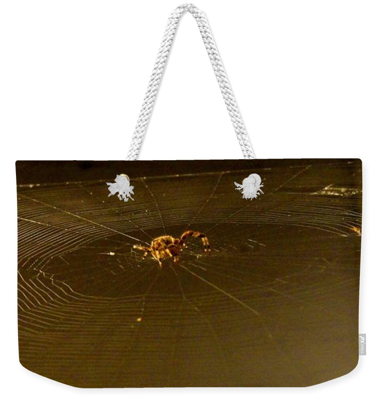 Spider Weekender Tote Bag featuring the photograph Waiting Spider by Meandering Photography