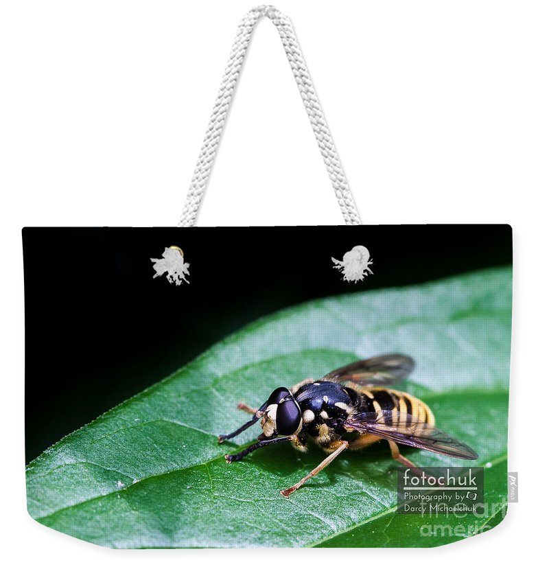 Allergy Weekender Tote Bag featuring the photograph Wasp Break by Darcy Michaelchuk