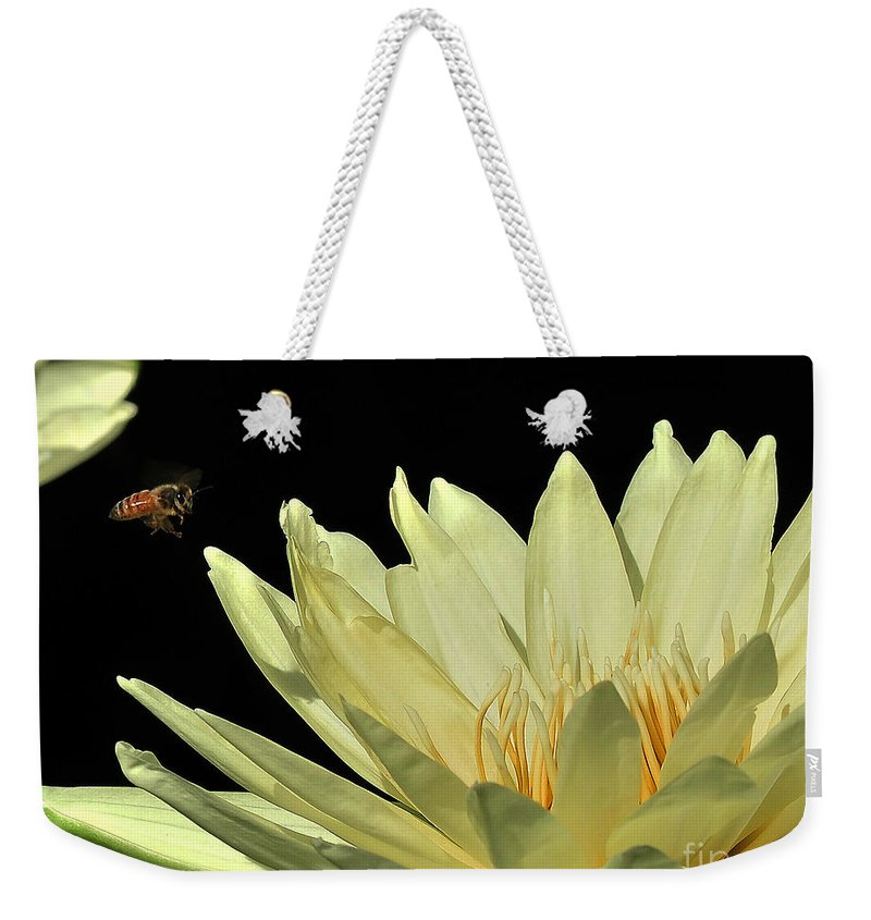 Water Lilies Weekender Tote Bag featuring the photograph water lily 3 Yellow Water Lily with Bee by Terri Winkler